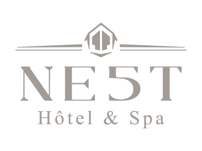 NE5T-logo-800x600px